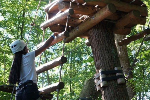 Hou jij je hart al vast bij een simpel klimrek, maar kan het voor je kind niet hoog genoeg? Ga dan eens naar een klimbos.