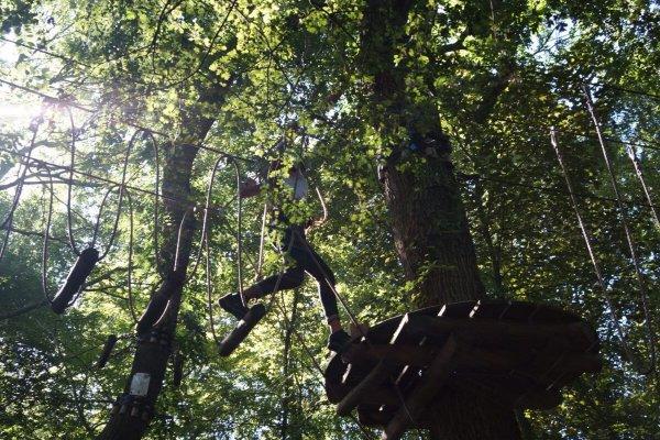 Abel klimbos is geschikte voor iedereen! Het klimbos is uitgezet met behulp van touwen, kabels en houten platforms door de bomen.